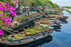 Ho Chi Minh City Tour from Cruise Port