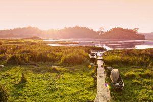 Cat Tien National Park & Travel Guide