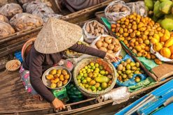 Mekong Delta Tour in Floating Market 1 Day
