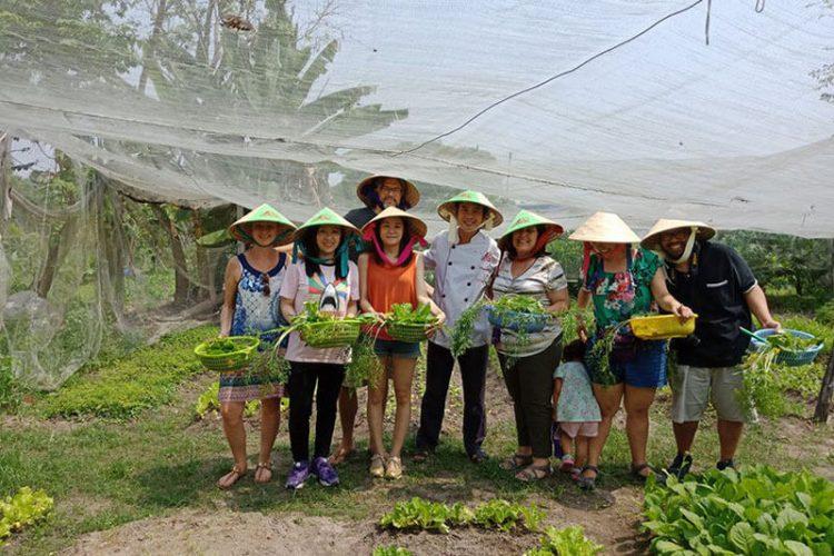 Organic Farm in Ho Chi Minh City Tor