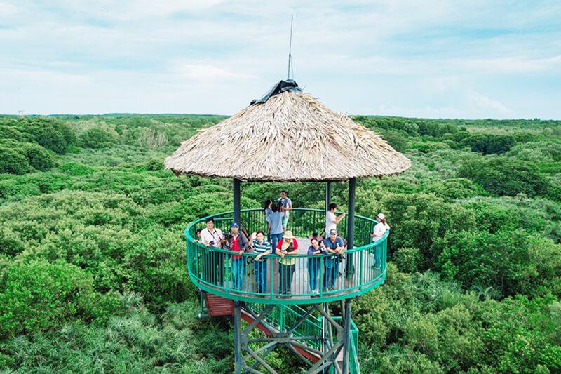 Tang Bong Watchtower Vam Sat Mangrove