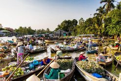 Treasure of Mekong Delta