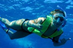 con dao island snorkeling tour