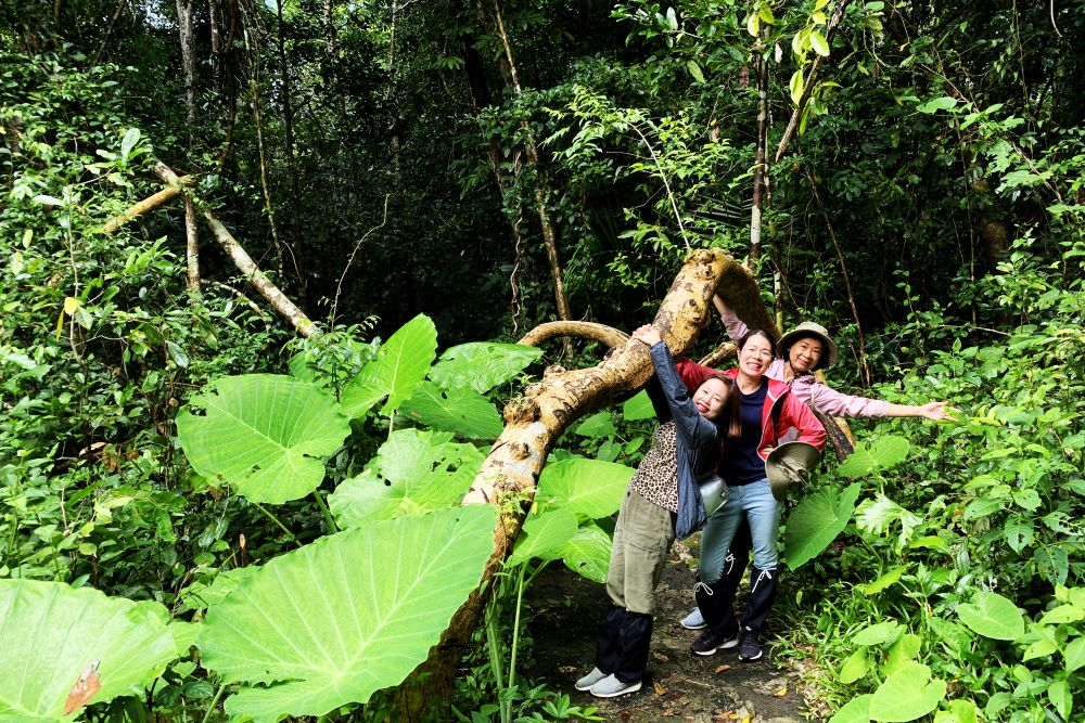 discover Nam cat tien national park