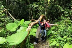 discover nam cat tien national park ho chi minh tours