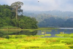 nam cat tien national park 2 days