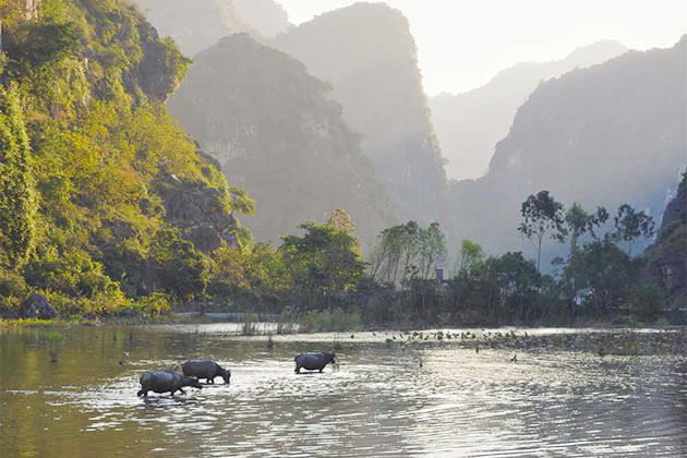 Peaceful Countryside of Ninh Binh